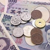 【就任祝い編】送料無料で胡蝶蘭を贈る方法!