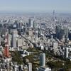 【激安あり】東京/都内に胡蝶蘭を通販で贈る注意点