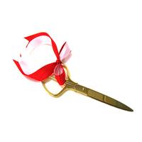 落成式と胡蝶蘭の良いカンケイ! 胡蝶蘭が贈り物に人気の理由