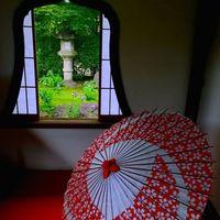 楽屋花の一般的な値段とおすすめの胡蝶蘭5選のご紹介