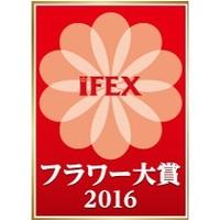 IFEXフラワー大賞 2016の魅力に迫る