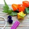 お盆に胡蝶蘭をお供えする時のマナーとおすすめ3選のご紹介