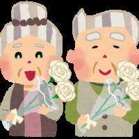 喜寿祝いには豪華な胡蝶蘭を!マナーとおすすめ3選のご紹介