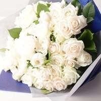 大切な方へ!誠実な白いバラの魅力徹底解剖