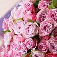 花束の贈り物を価格から選ぶ!厳選おすすめを3つずつご紹介
