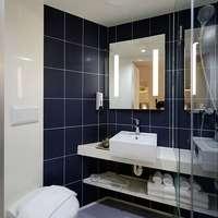 トイレをステキな空間に!選べる観葉植物セットならできる