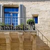 選べる観葉植物セット!屋外に飾ると窓の外が違って見える