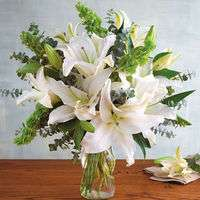 【徹底解説】清楚なユリ!白や美しい色の花束おすすめ3選も
