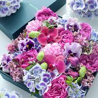 数ある種類の中から母の日にぴったりな胡蝶蘭を選ぼう