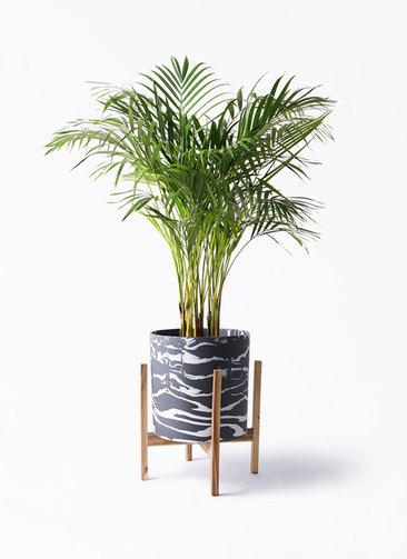 観葉植物 アレカヤシ 8号 ホルスト シリンダー マーブル ウッドポットスタンド付き