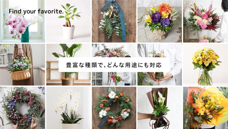お祝いのお花の種類が豊富