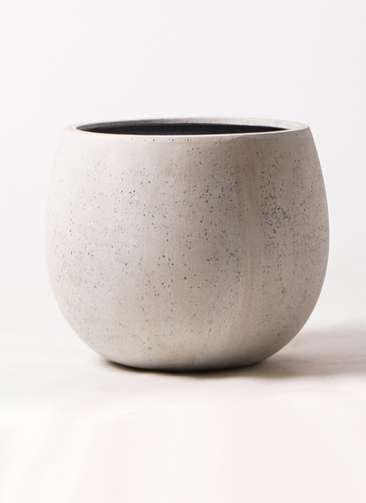 鉢カバー  テラニアス ローバルーン アンティーク 8号鉢用 ホワイト #GREENPOT EB-TL4234AW