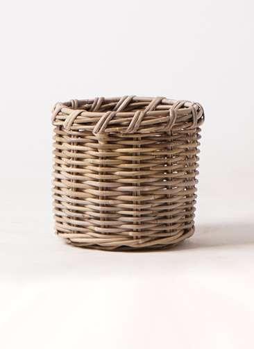 鉢カバー  グレイラタン 6号鉢用 #stem B2291