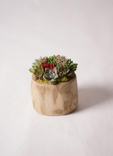 寄せ植え Teak Wood Round Large #002