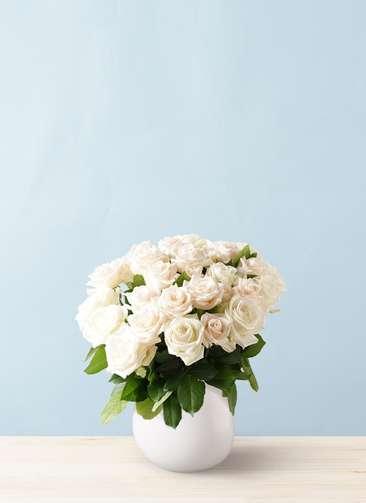 バラ グラスブーケ ホワイト M (30本入) エクリュポット Mサイズ付き