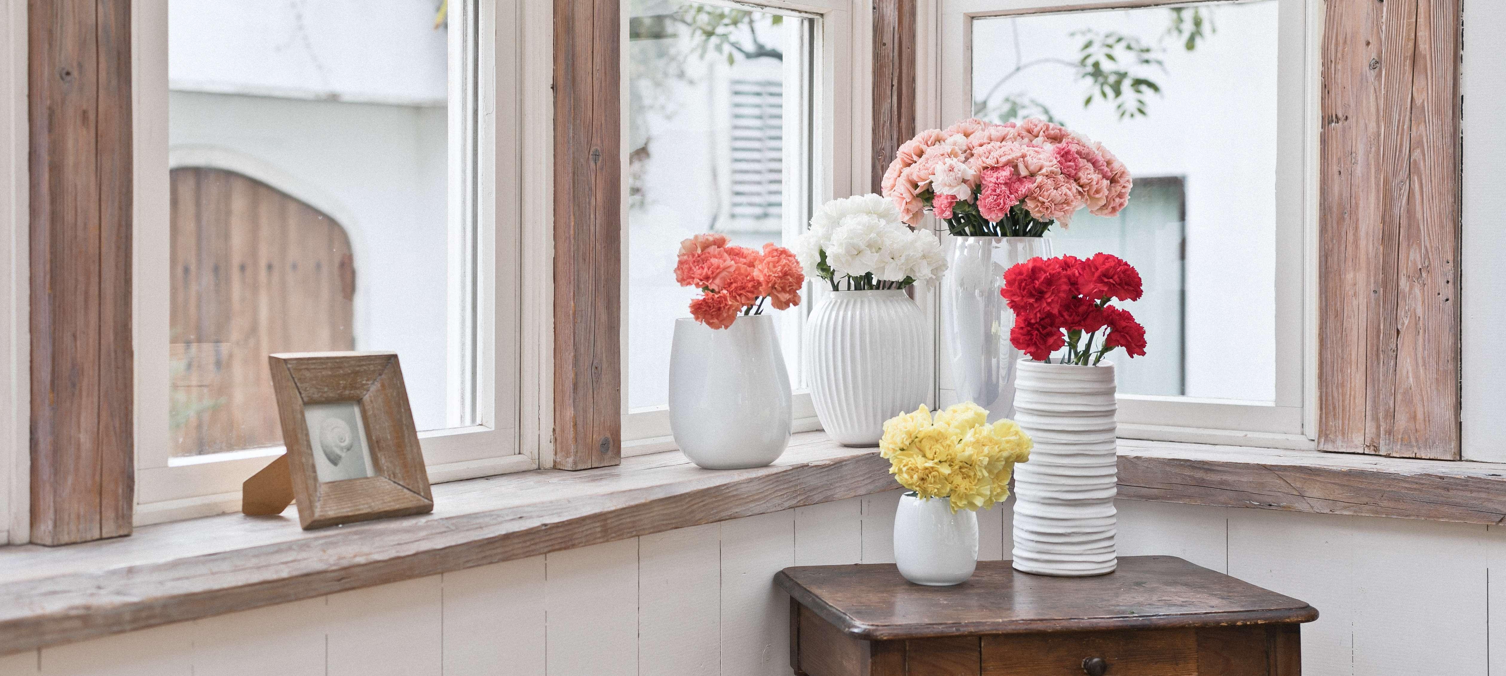 カーネーション - お花と植物のギフト通販 HitoHana(ひとはな)