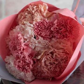 カーネーション 花束 ピンク