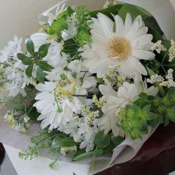 ガーベラ 花束 白(ホワイト)
