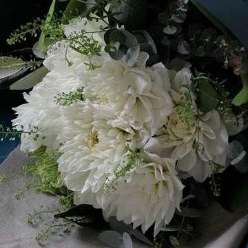 ダリア 花束 白(ホワイト)