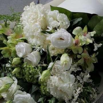 トルコキキョウ 花束 白(ホワイト)