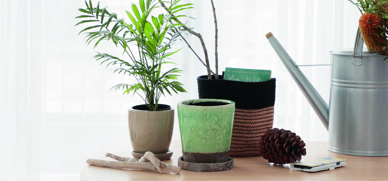 鉢カバー インテリア - お花と植物のギフト通販 HitoHana(ひとはな)