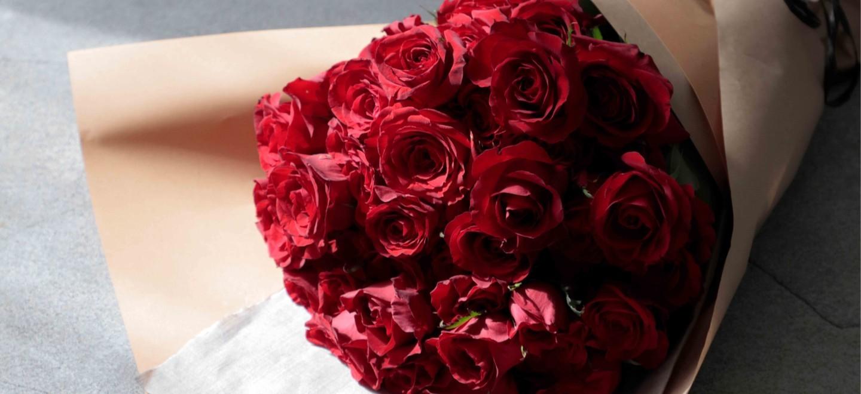クリスマス バラ - お花と植物のギフト通販 HitoHana(ひとはな)