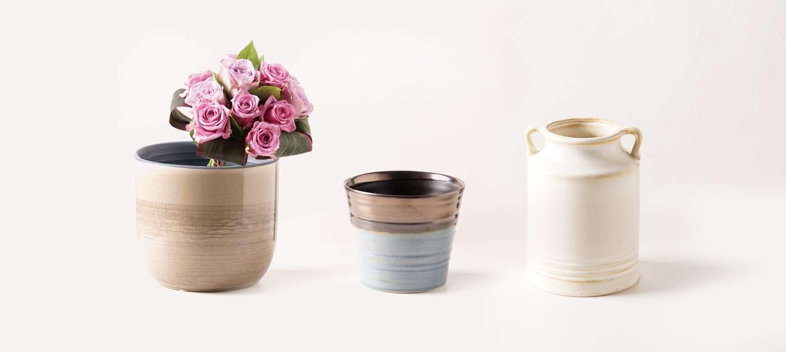 clay (クレイ) - お花と植物のギフト通販 HitoHana(ひとはな)